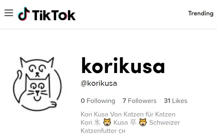 Kori-Kusa-TikTok-Profil